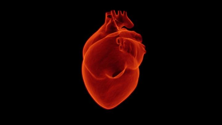 Les arômes de cigarette électronique peuvent altérer la fonction du muscle cardiaque